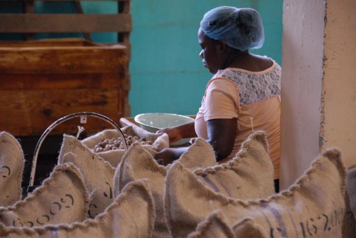 Nutmeg factory worker Vicky 2.JPG