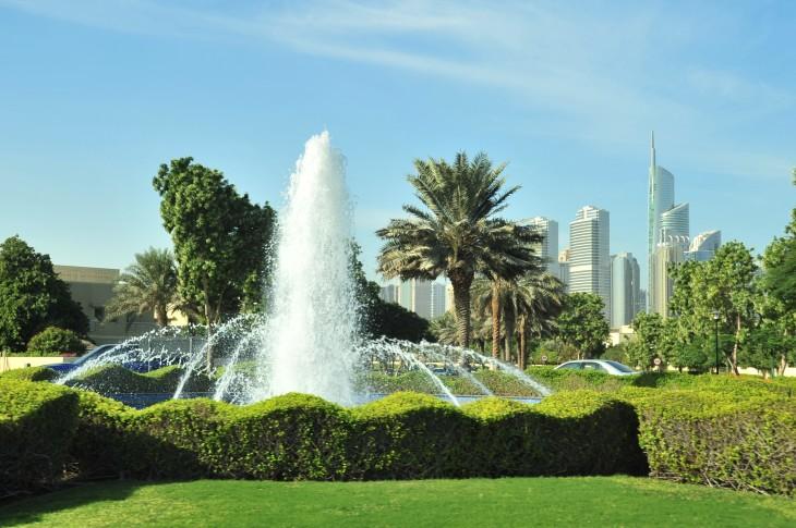 pic E Dubai plantings.JPG